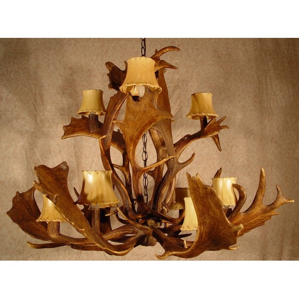 Real Antler Carolina Fallow Deer Chandelier SP-5